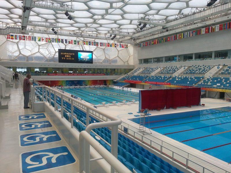 Najznámejší plavec sveta Michael Phelps, slovenské rekordy a svetový rekord v pomalom plávaní
