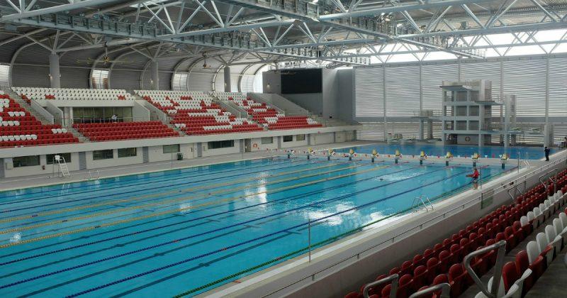 Slovenská plavecká federácia: Čo všetko sa deje v profesionálnom plávaní?